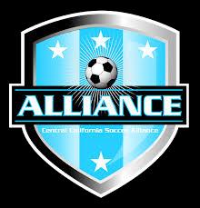 ccsa alliance